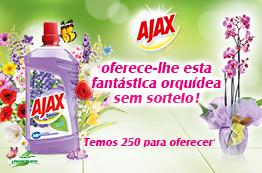 Evento Ajax Oferta de uma orquídea